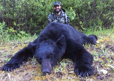 BC Black Bear Hunt
