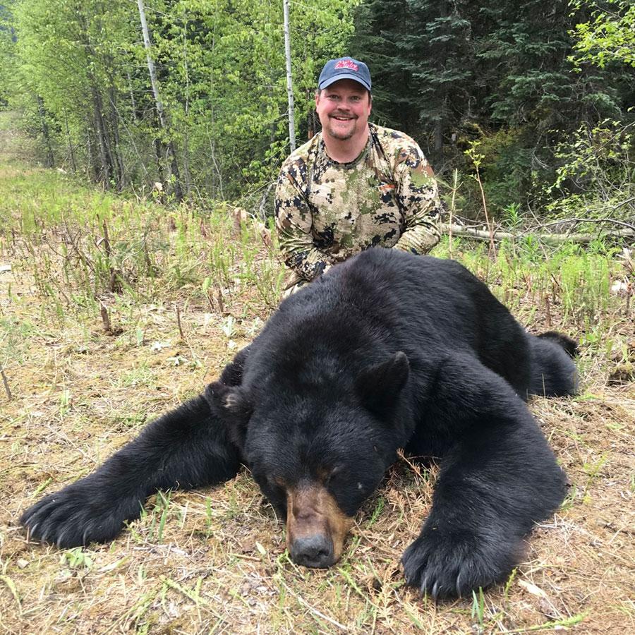 BC Bear Hunting